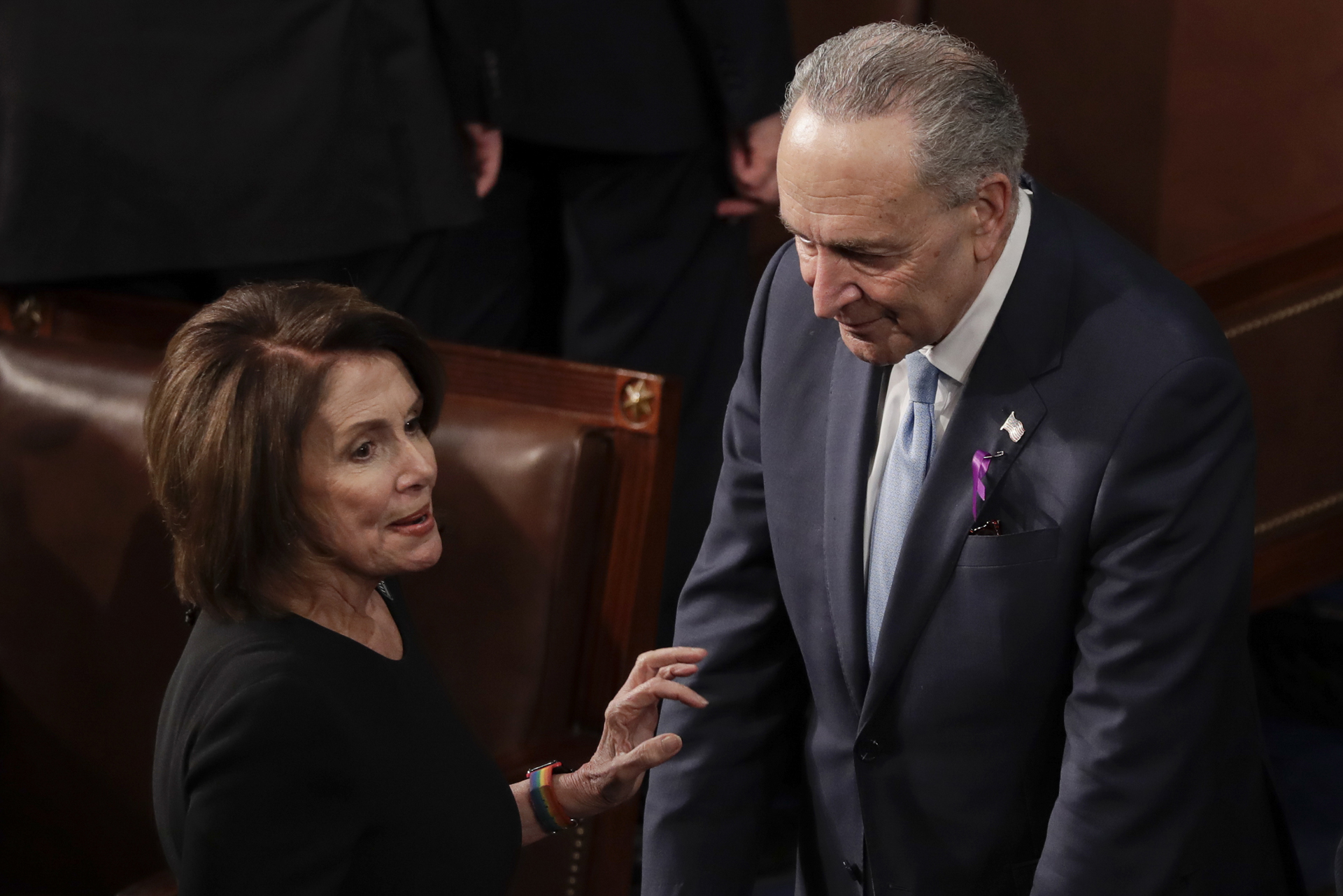 Steve Moore: Pelosi, Schumer hate 'tax cuts for the rich' except for Tesla, GM electric vehicle drivers